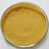 Haute qualité congelés en vrac de gingembre en poudre déshydratée, extrait de gingembre, le Gingembre P. E.