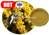 Estratto di Catechu dell'acacia di alta qualità, catechina 40%, fegato proteggente