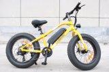 bici eléctrica del neumático gordo sin cepillo del motor 250-350W