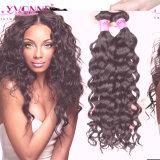 Tessuto peruviano dei capelli umani dei capelli all'ingrosso per le donne di colore