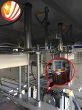 PE automatique de Jumeau-Tête des meilleurs prix empaquetant la machine