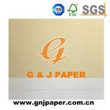 Documento basso di vendita caldo di disegno della carta da parati del documento nuovo della decorazione