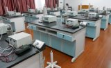 High Quality Laboratory Steel Smokes Hood (PS-HF-016)