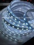 CE contabilità elettromagnetica LVD RoHS due anni di garanzia, indicatore luminoso di striscia del LED RGB+W