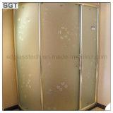 Effacer les écrans givrés durcis de Bath de portes de douche en verre