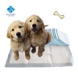 Más Vendidos de Amazon desechables Popular cambiable Gel alfombrilla de formación de cachorro