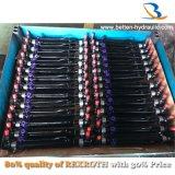 포크리프트 트랙터 기중기를 위한 액압 실린더를 조타하는 최고 공장 가격