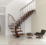 Escalera de acero meatal usada alta calidad de la pintura industrial (escaleras de acero rectas al aire libre)