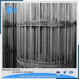 2X2 сварило панели загородки ячеистой сети в датчике 6