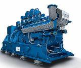 Для дизельных двигателей MWM International