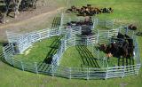 安い低価格が電流を通したオーストラリアは2017年の工場直接新しい到着の牛パネルを溶接した