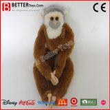 아이 선물을%s En71 견면 벨벳 동물성 연약한 원숭이에 의하여 채워지는 장난감