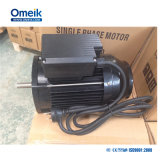 SD/FT eenfasige AC Motor 220V/50Hz