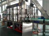 Machine d'embouteillage de boisson carbonatée en plastique automatique de bouteille