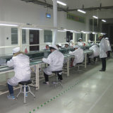 Oberseite 5 Solar-PV-Panel-Hersteller