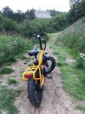 """20 """" grand E-Vélo puissant du pneu 500W"""