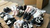 在庫の冬のスポーツの靴