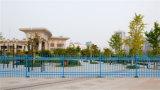Загородка 60-4 сада шикарной декоративной обеспеченностью селитебная гальванизированная стальная