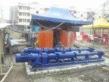 Enige de pomp-Riolering van de Schroef pomp-Roterende Pomp