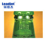 Impresora de la botella de cristal de la máquina de la marca de la insignia del CO2 del laser del poder más elevado de Leadjet