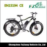 Verde Litio Energía Eléctrica Bicicleta con Doble Freno de Disco