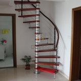 По современному главная лестница цельной древесины из нержавеющей стали