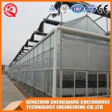 Casa verde de vidro da Multi-Extensão da agricultura com Hydroponics Stsyem