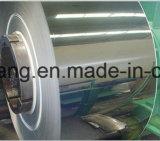 La Chine usine 304 laminés à chaud no 1 plaque en acier inoxydable/feuille 6.0mm