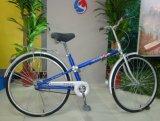 Новый велосипед прямо на улице рамы велосипедов (FP-LDB-014)