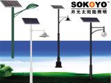 Lumière solaire approuvée de barrière de la CE 15W LED avec 3.5m Polonais