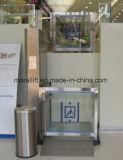 Piattaforma residenziale dell'elevatore di sedia a rotelle di approvazione del CE