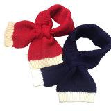 Таким образом женщин зимой трикотажные мягкий шарфом (SK102)