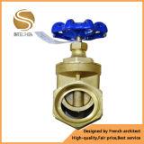 Válvula de porta de 1 polegada para tubulação para tratamento de água