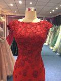 Nixe-Spitze-Abend-Kleid für Hochzeit