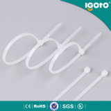 Self-Locking пластичная Nylon связь кабеля с SGS RoHS Ce