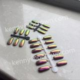 Het Pigment van de Kunst van de Spijkers van het multi-Chroom van de Regendruppel DIY