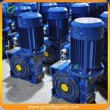 Motor da caixa de engrenagens da transmissão do sem-fim do ferro de molde RV130-4-4-40