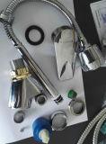 Escolhir o misturador da cozinha do punho com bico do refletor