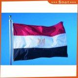 주문품 거대한 크기 국기 및 거대한 깃발 (크기 고객 요구에 따라 각종 이다) 모형 No.는: Qz-100