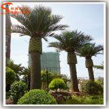 Palmier en acier artificiel de datte de vente chaude pour la décoration d'hôtel