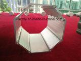 6061 L'anodisation de grande section de profil en aluminium/aluminium extrudé