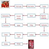 Máquina de fabricação avançada de pasta de tomate concentrada