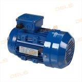Motore elettrico trifase di CA 7124-370W