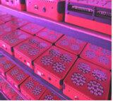 наивысшая мощность СИД ватта 365W-385W толковейшая Programmable растет светлой для Hydroponic с режимами цветка и Veg и обломоком 3W СИД