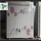 4mm Silkscreeen Vidro Decoração de Vidro para Certificado TUV