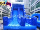 大人および子供の膨脹可能な水スライド、販売のための都市スライドのための極度の膨脹可能なスリップNのスライド