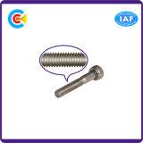 El acero de carbono de DIN/ANSI/BS/JIS/4.8/8.8/10.9 inoxidables galvanizó los sujetadores internos de la maquinaria/de la industria del tornillo de socket del hexágono