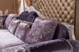Sofà sezionale Y1519 di stile della mobilia antica del salone