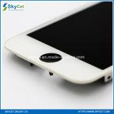Schermo dell'affissione a cristalli liquidi dell'affissione a cristalli liquidi Tianma del telefono mobile per iPhone5C