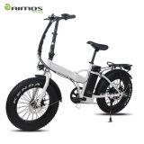 Piezas de bicicletas eléctricas 1000 vatios Hub Motor Kit Mountain E Bicicleta / grasa neumático bicicleta eléctrica / bicicleta eléctrica